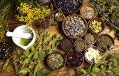 Лечение молочницы травами: особенности фитолечения